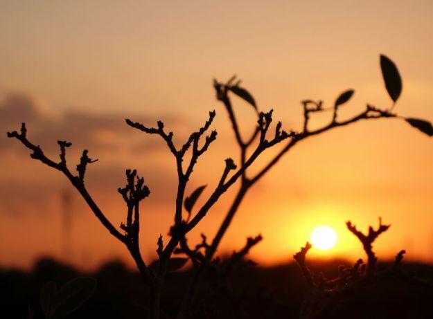 sunset 031815.5