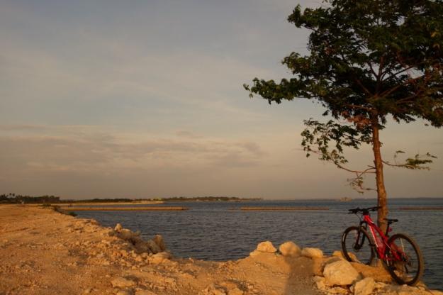 Biking 01