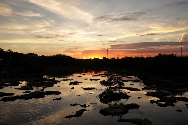 Sunset 12.15 (1)