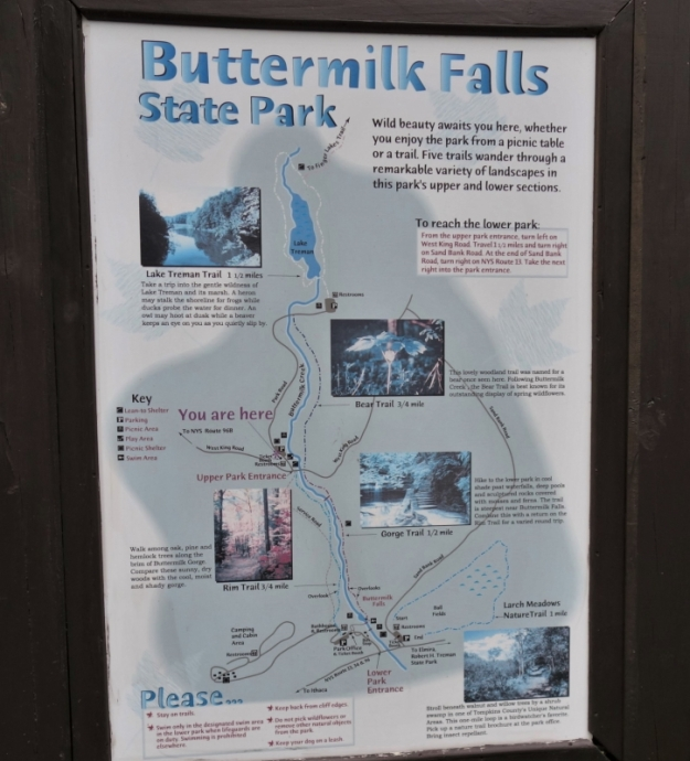 Buttermilk Falls (4)