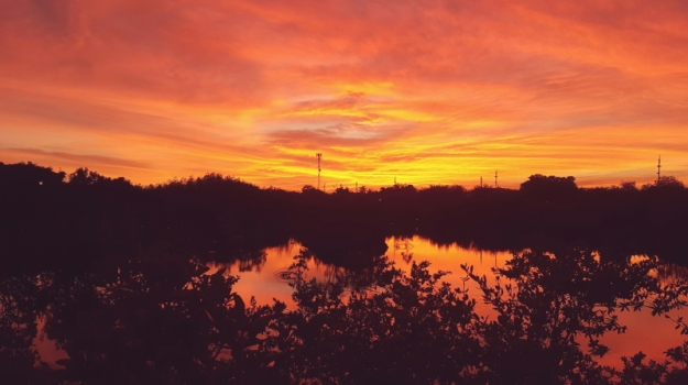 Sunset 02.29 (1)