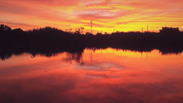 Sunset 02.29 (2)
