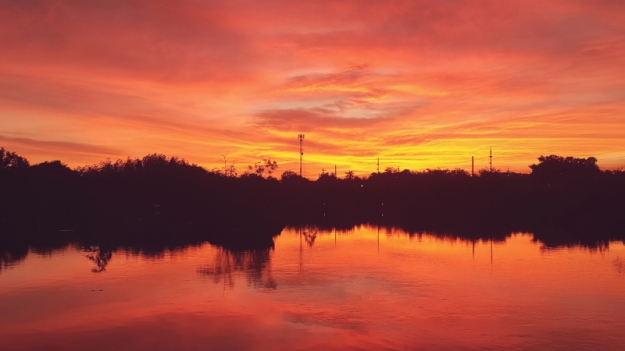 Sunset 02.29 (3)