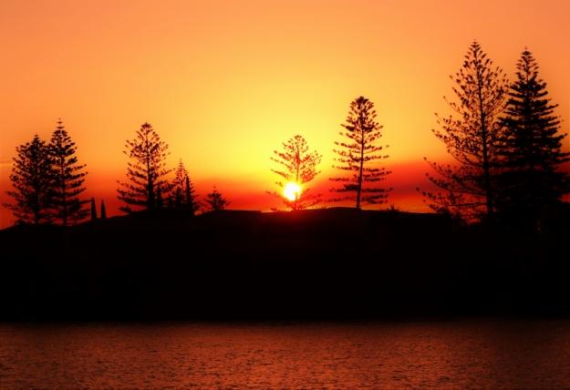 gc-neddy-sunset-07