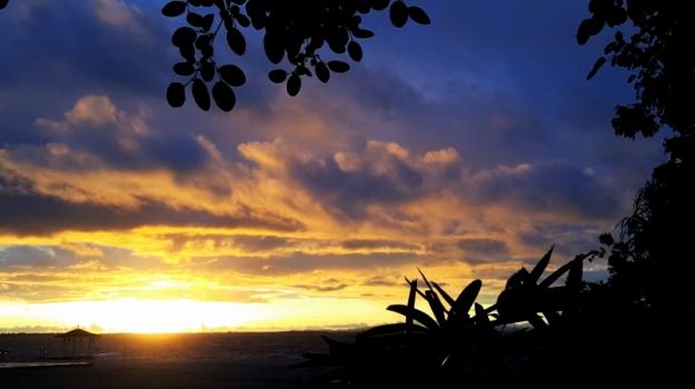 sunrise11-25-3